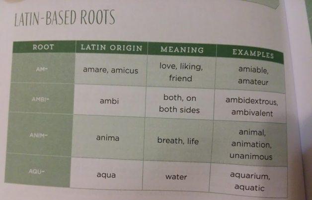 Latin Based